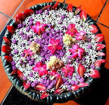 flower-1735246__340